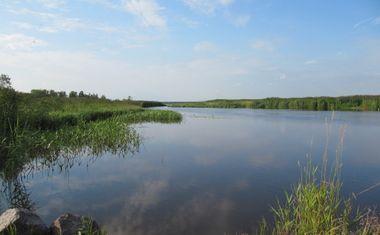Озеро Лахтинский разлив