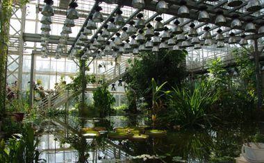 Главный Ботанический сад РАН