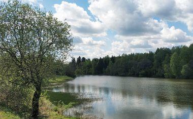 Ильинский пруд
